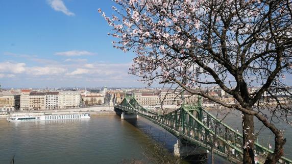 bridge-3297576_1280